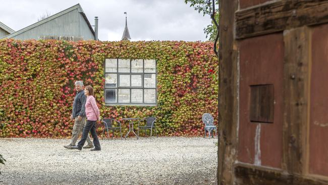 The bluestone walls of the old gaol are covered in ivy. Picture: Sarah Matray.