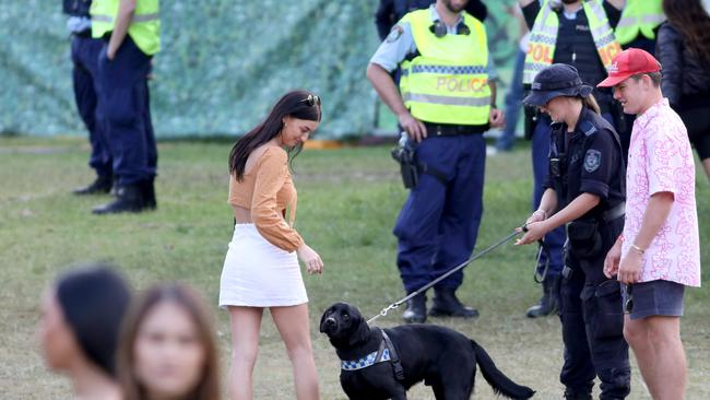 Police with sniffer dogs search people after they enter through the main entrance at the Listen Out Music Festival, Centennial Park, Sydney. 5th October 2019. Picture by Damian Shaw
