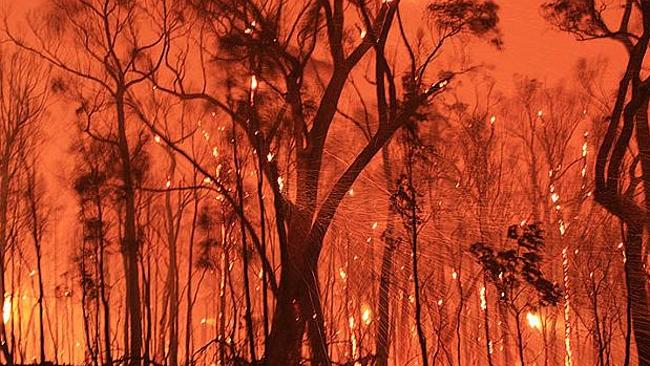 A reader image of the Black Saturday bushfires. Picture: Supplied