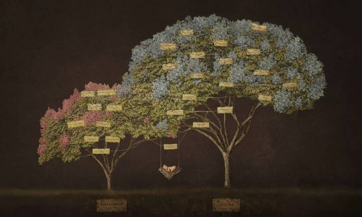 Such a beautiful and original way to do a family tree.