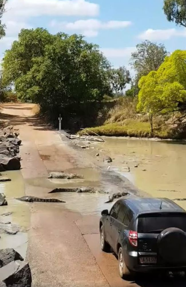 A car became surrounded by about 30 saltwater crocodiles at notorious Cahills Crossing. Picture: Kimberley Off-Road Adventure Tours