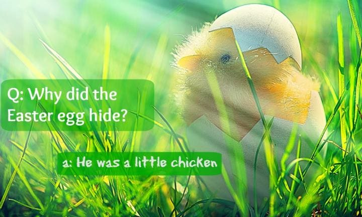 10 cracking Easter jokes