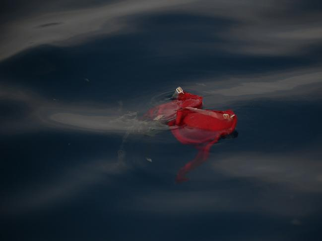 An undergarment believed to belong to a passenger on board the ill-fated Lion Air flight JT 610 floats at sea in the waters north of Karawang, West Java. Picture: AFP