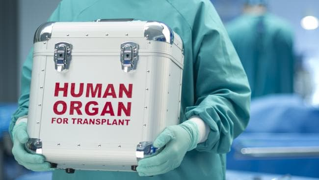 Image result for organ harvesting