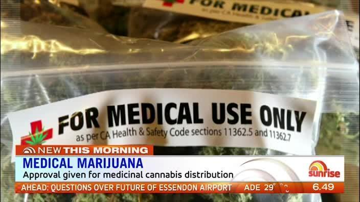 Rita Panahi speaks out about medical marijuana on Sunrise