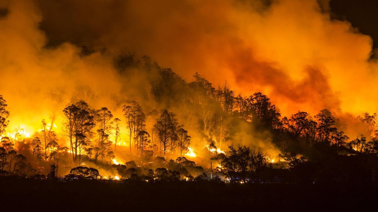 Tasmania Fires Firefighters Remain Vigilant Despite Conditions Easing