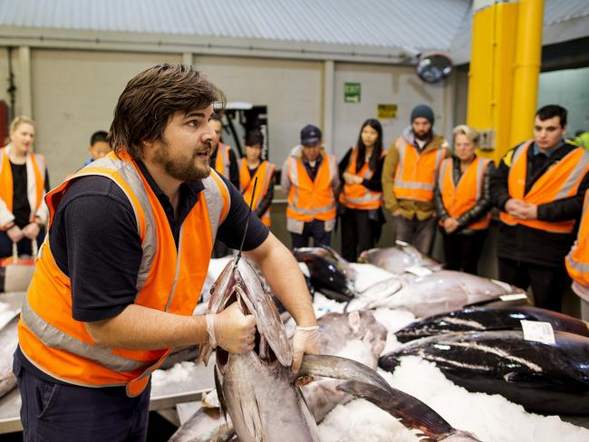Alex Stollznow shows what Sydney Fish Market has to offer over winter. Picture: James Horan