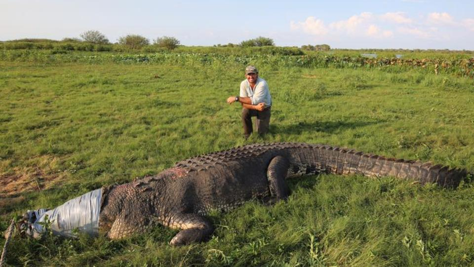 Matt Wright with the big croc. Picture: Facebook
