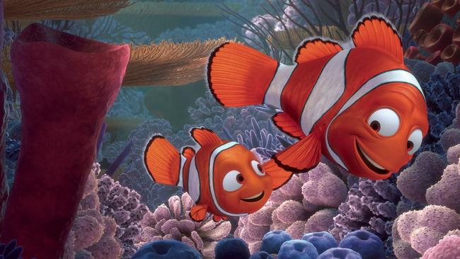 Finding Nemo, Finding Dory: Scientists reveal major flaw in