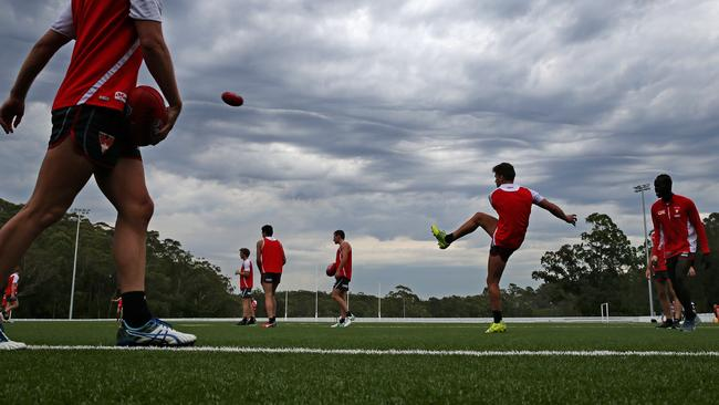 Sydney trained on a synthetic surface on Tuesday. Picture: Toby Zerna.