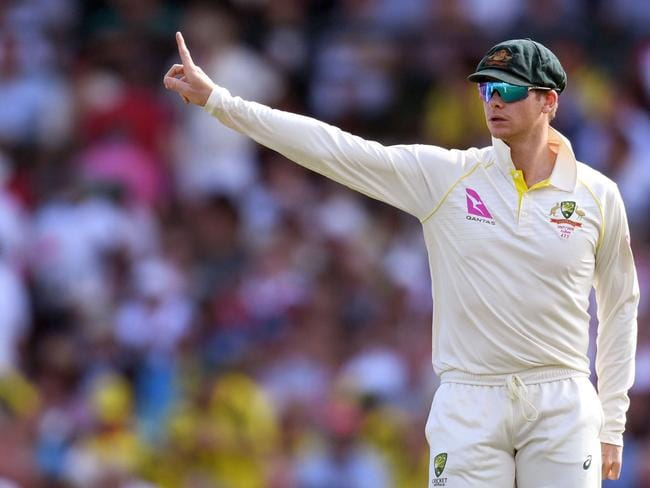 Australia's captain Steve Smith has helped out hundreds of koalas this Ashes.