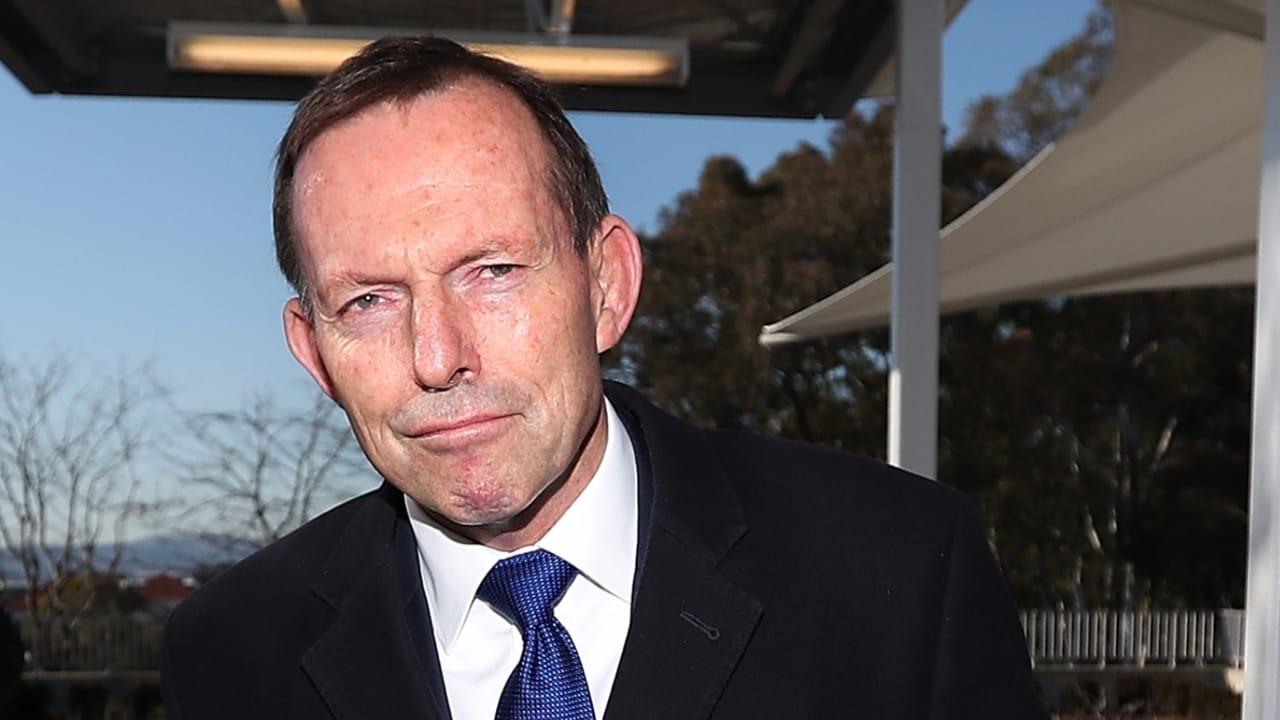 Tony Abbott accepts special envoy offer