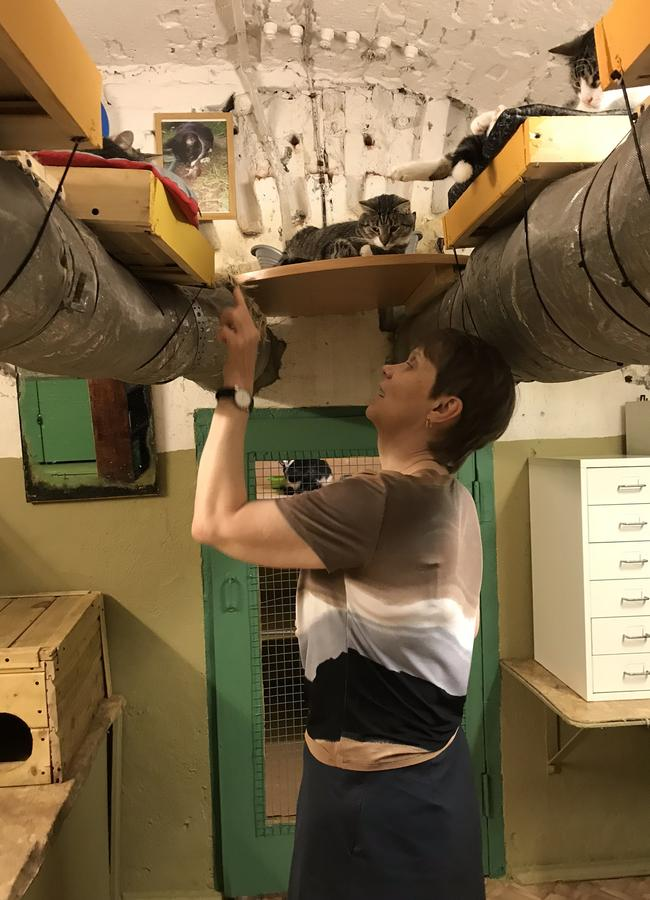 Maria Haltunen, secretary to the director of The State Hermitage Museum in St Petersburg, Russia, says hello to one of the 70 cats that live in the basement of the museum. Picture: Elizabeth Fortescue