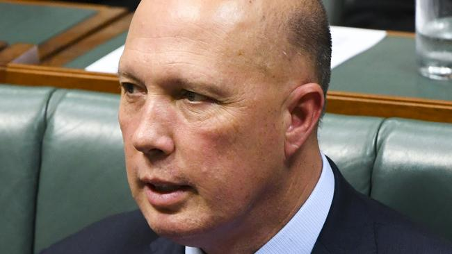 Australian Home Affairs Minister Peter Dutton has branded those remaining in Syria a 'significant security threat' and made it clear the Government does not want them back. Source: AAP