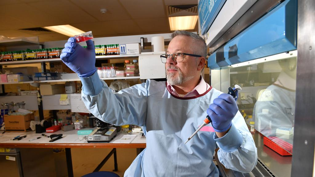 Leukaemia SA: Amazing blood cancer research in Adelaide