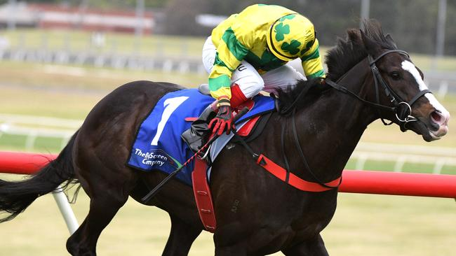Pacodali will head west for the big Group 1s in Perth after winning the Eclipse Stakes. Picture: AAP
