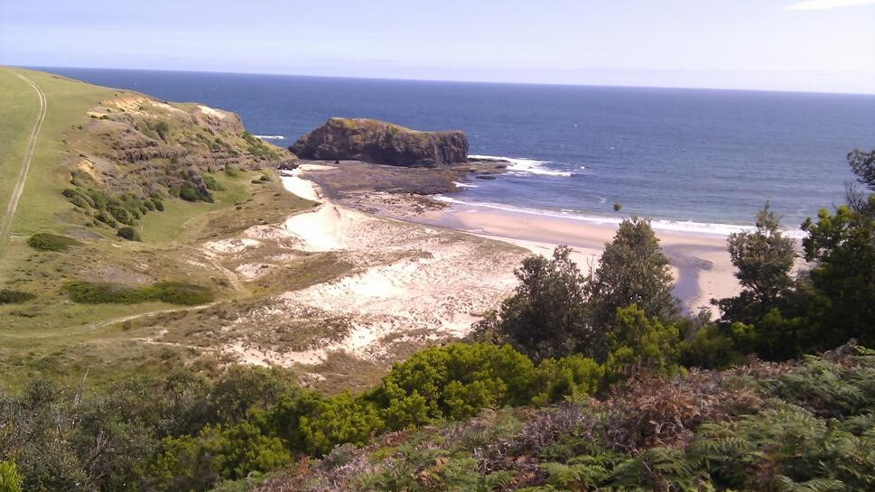 Flinders downing: Man drowns off Bushrangers Bay Beach on ...