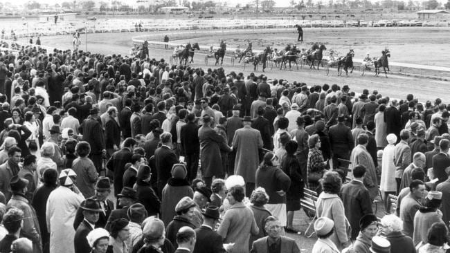 One of the first harness racing meets at Globe Derby Park in 1969.