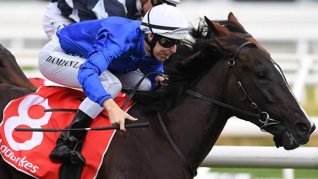 Lyre is the best bet this weekend at the Blue Diamond Stakes.