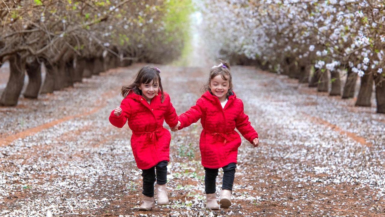 Mildura twins Isabella and Alessandra. Picture: Jason Edwards