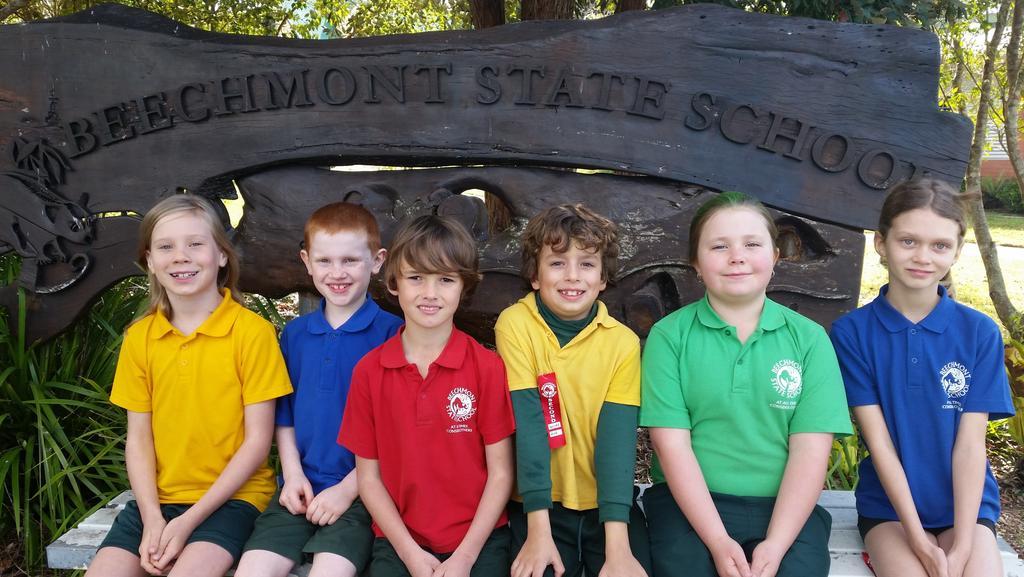 Smaller Gold Coast hinterland schools rate high in NAPLAN