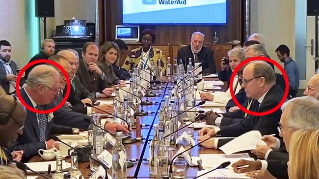 Charles sat across from Albert at the WaterAid summit. Picture: PA via AP