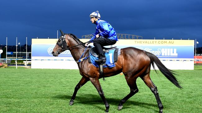 Winx ridden by Hugh Bowman during track work at Moonee Valley.