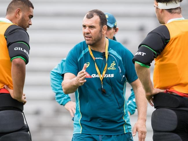 Wallabies coach Michael Cheika has been pushing his players hard at training.