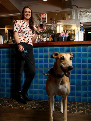 Kat Mayhook and her greyhound Mya enjoying an evening tipple at The Balmain Hotel. Picture: Toby Zerna