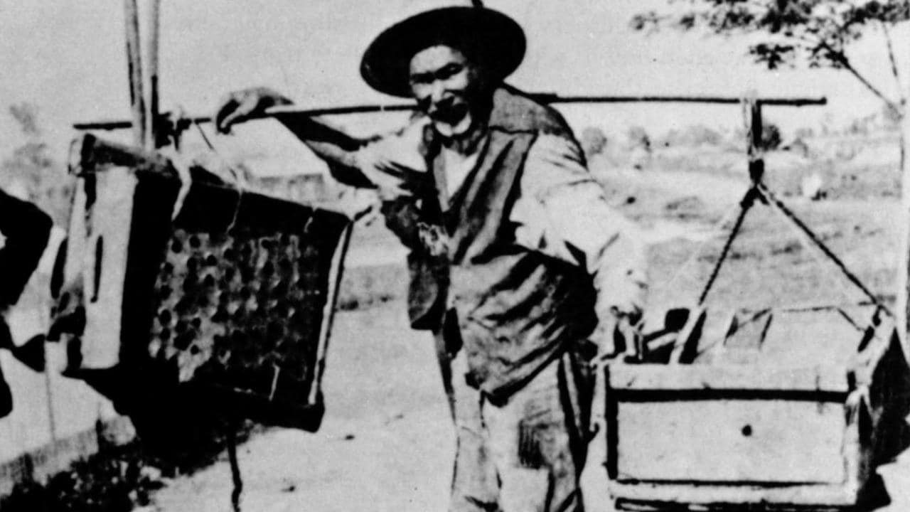 Chinese miners were not accepted or respected by many non-Chinese people on the goldfields.