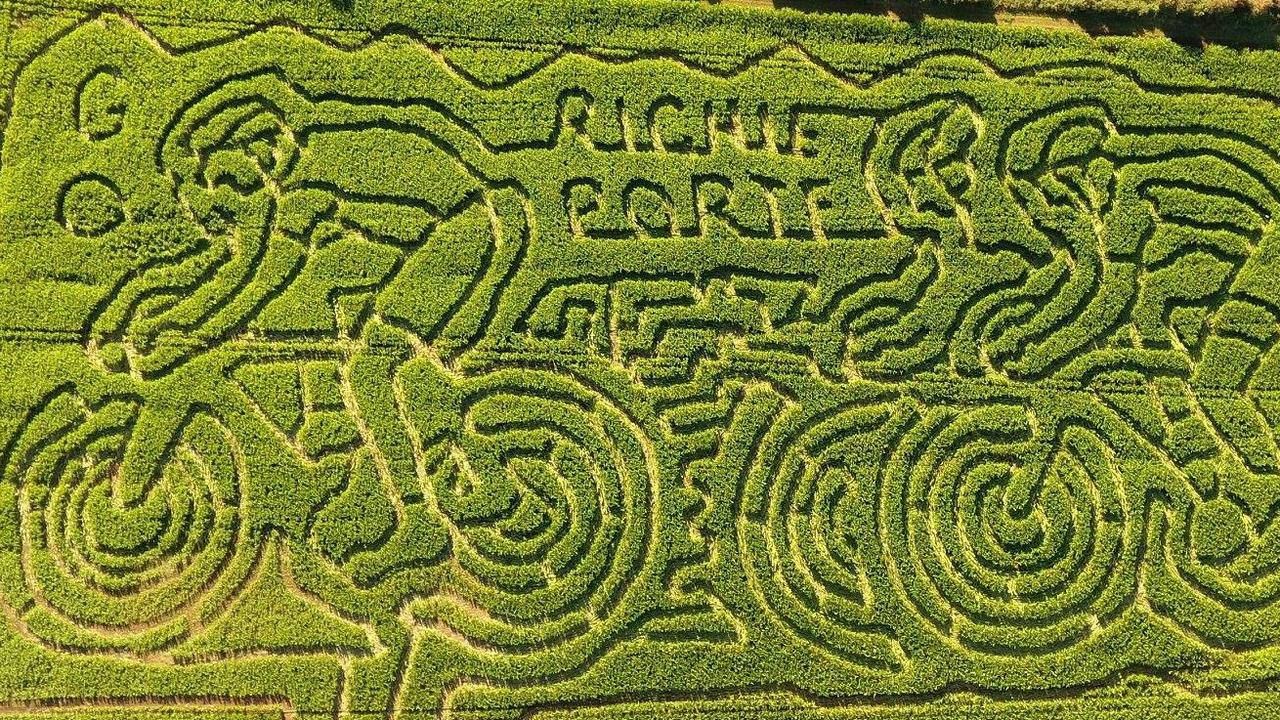 The Richie Porte maze at Rupertswood Farm at Hagley in Tasmania's north. Picture: Facebook