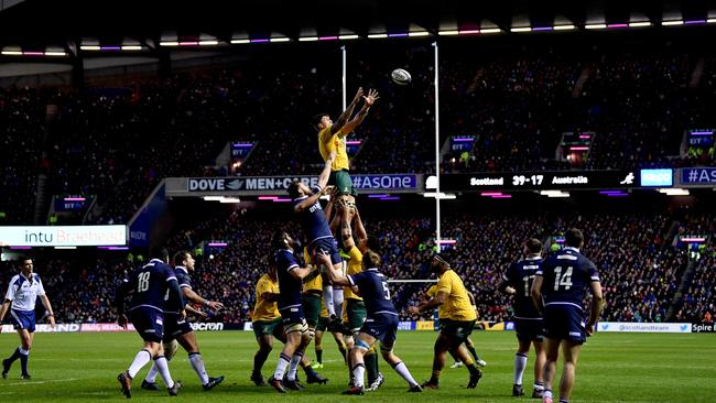 The Wallabies' lineout struggled in the first half against Scotland.