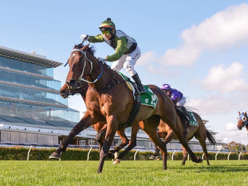 TAB Turnbull Stakes