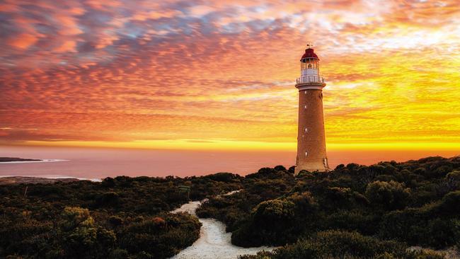 Tourists urged to holiday in Australia amid bushfire crisis