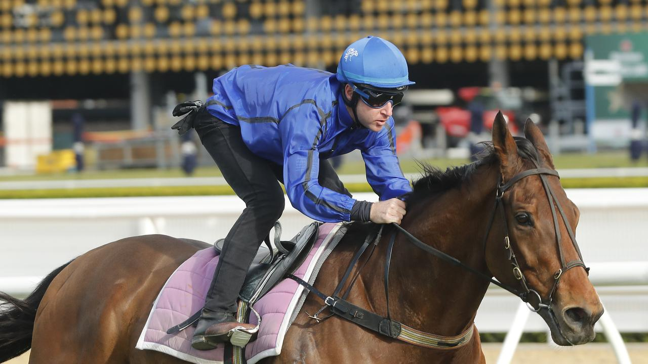 SYDNEY, AUSTRALIA — SEPTEMBER 10: Tommy Berry riding Happy Clapper wins heat 2 during the barrier trials at Royal Randwick Racecourse on September 10, 2019 in Sydney, Australia. (Photo by Mark Evans/Getty Images)