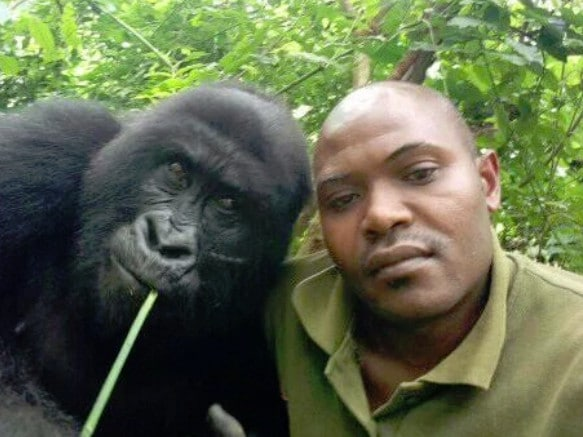 The rangers are guardians of the park that was launched to protect the endangered Mountain gorillas. Picture: Facebook