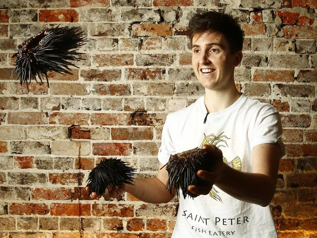 Chef Josh Niland serves up uni (sea Urchin) in his Paddington restaurant Saint Peter. Picture: John Appleyard