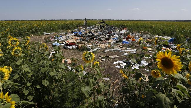 Wreckage and debris at the crash site of Malaysia Airlines Flight MH17, near the village of Hrabove (Grabovo), Donetsk region July 26, 2014. Picture: Reuters/Sergei Karpukhin.
