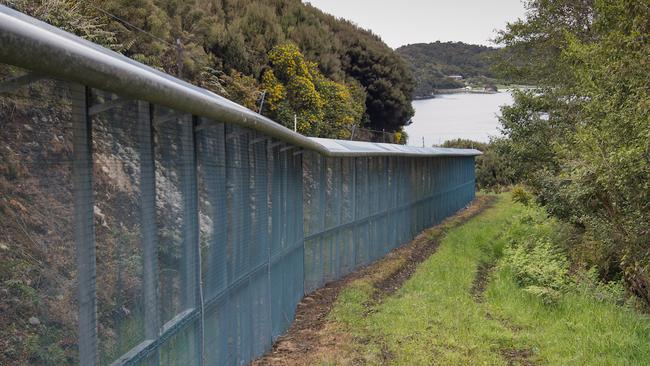 The Xcluder predator fence on Dancing Star Reserve. Picture: Sothebys