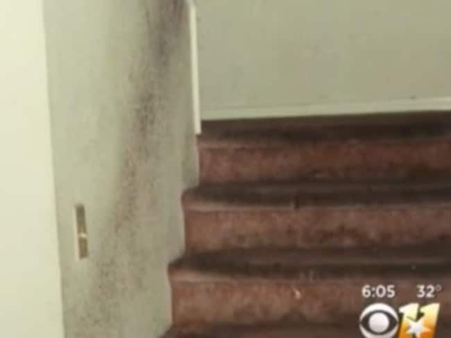 The walls and carpet of the Turpin family home in Texas was were covered in faeces and dirt. Picture: Supplied