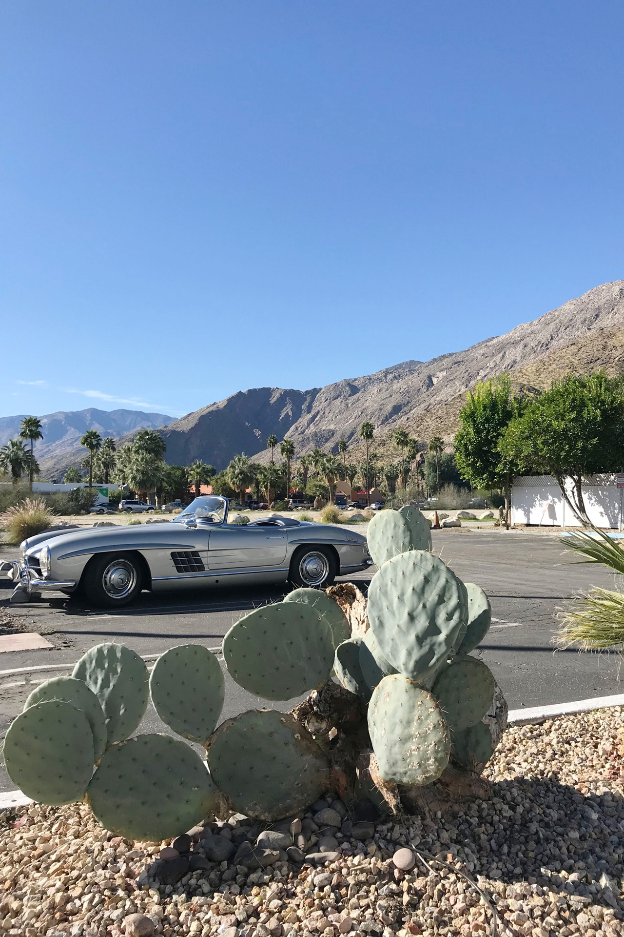 Emma Elizabeth shares her highlights from Modernism Week 2018