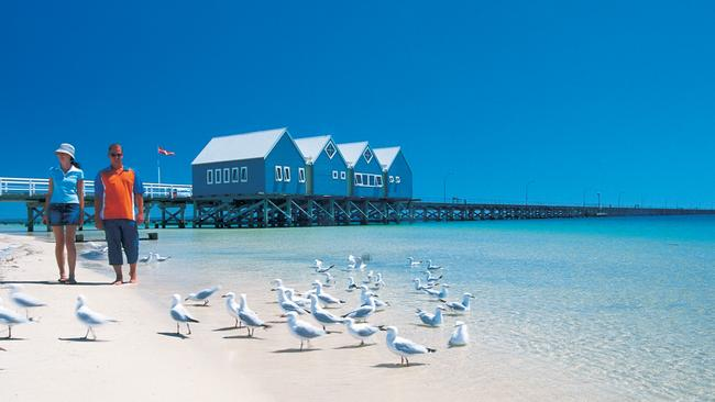 You'll be sharing the territory with the gulls. Picture: Tourism Western