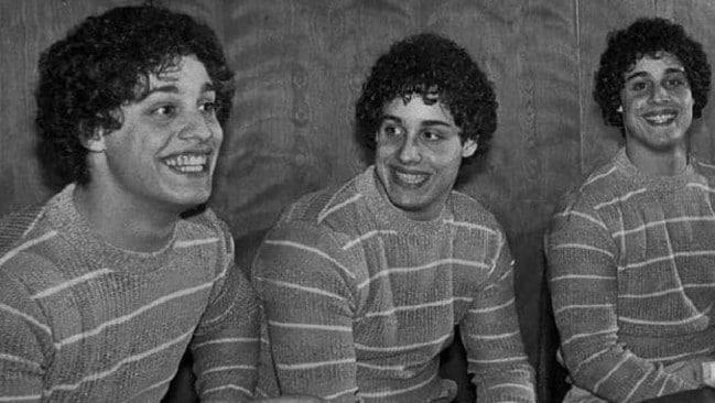 Identical twins psychology study