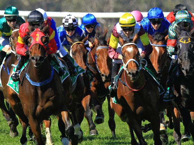 Thoroughbred racing heads to Hawkesbury on Tuesday.