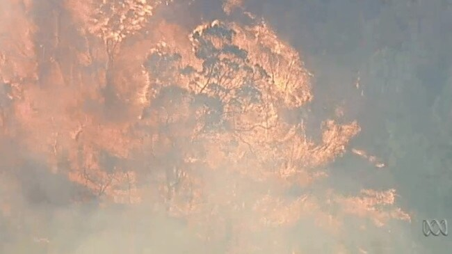 The erratic bushfire is spreading rapidly through the Bunyip State Park area. Picture: ABC News