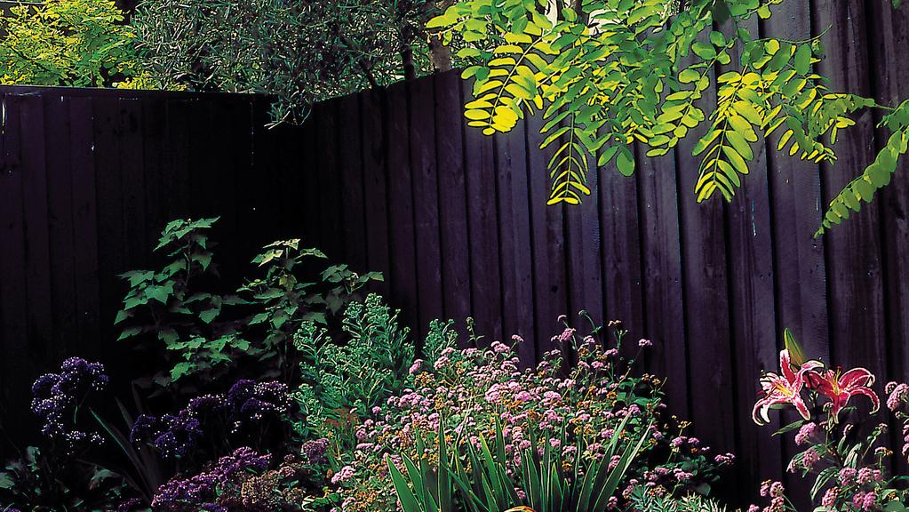 Great Ways To Turn Your Eyesore Paling Fence Into A Garden