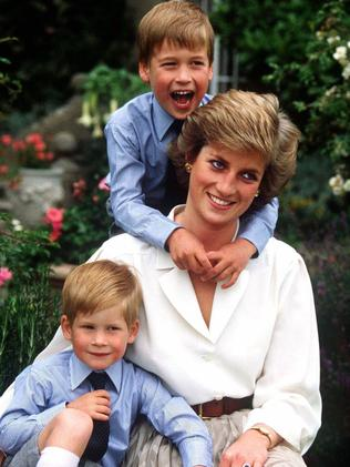 Diana Princess Of Wales And Sons Prince William Harry Picture