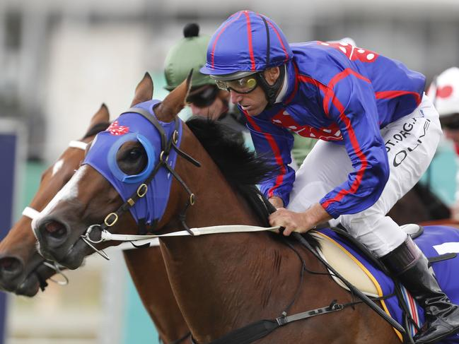 Damien Oliver pilots He'll Hunt Us to victory in the Magic Millions Maiden Plate.