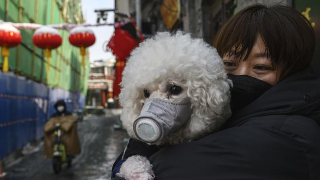 A Chinese woman holds her dog that is wearing a protective mask as well as they stand in the street. Picture: Kevin Frayer/Getty Images