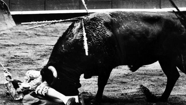 Spanish bullfighter Manuel Laureano Rodriguez Sanchez, known as Manolete lies on the ground after being gored in the groin in 1947.